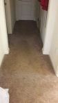 Carpet Cleaning (Before)